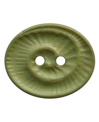 Polyamidknopf oval mit 2 Löchern - Größe:  23mm - Farbe: hellgrün - ArtNr.: 348823